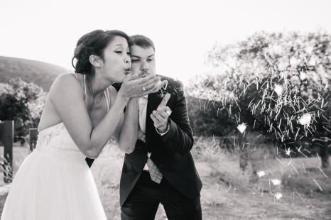 bride-and-groom-blow-dandelions