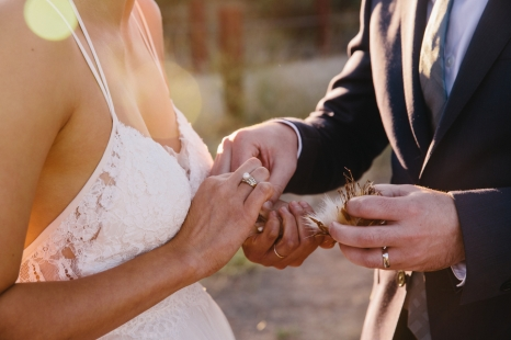 bride-and-groom-hands-holding-plant