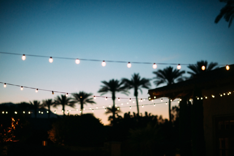 string-lights-with-palmtrees