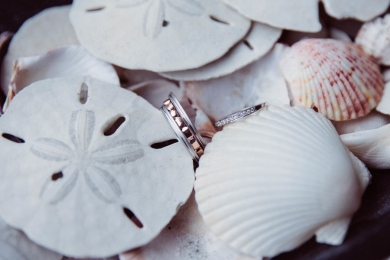 wedding-rings-with-seashells