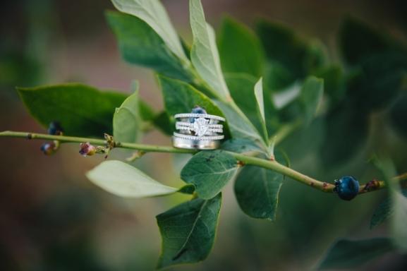 wedding-rings-on-leaf