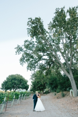bride-and-groom-kissing-under-tree